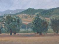 Espagne, oliviers dans la vallée