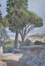 Saint Tropez vu d'en-haut